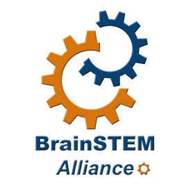 Brain STEM Logo