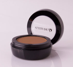 CONTOUR & BRONZER POWDER-12