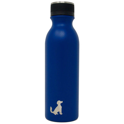 20oz Insulated Stainless Steel Bottle