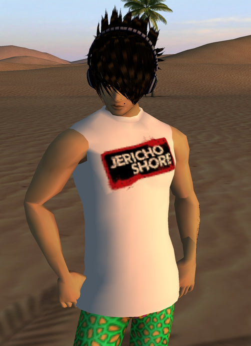 JERICHO SHORE SHIRT