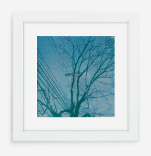 telephone wires - 5x5.2 / Gallery White / With Mat