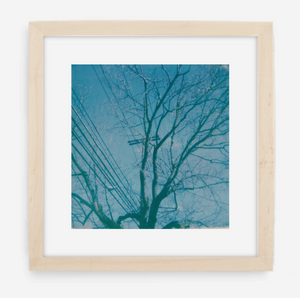 telephone wires - 5x5.2 / Gallery Natural / With Mat