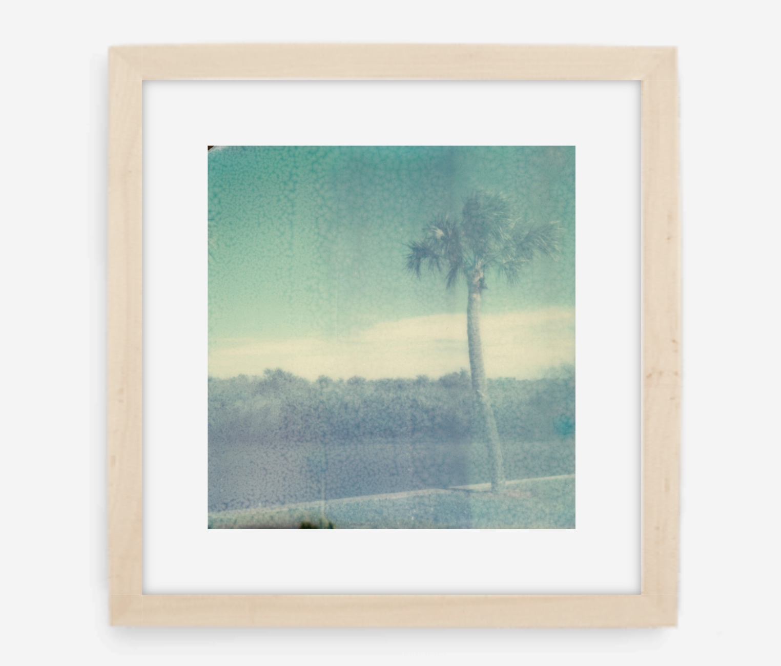 florida - 5x5.2 / Gallery Natural / With Mat