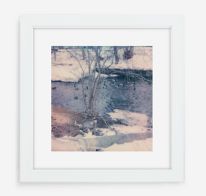 winter ducks - 5x5.2 / Gallery White / With Mat
