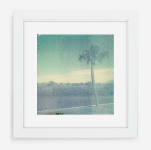 florida - 5x5.2 / Gallery White / With Mat