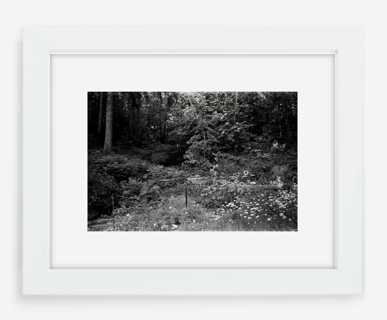 the garden - 8x12 / Gallery White / With Mat - 12x18 / Gallery White / With Mat