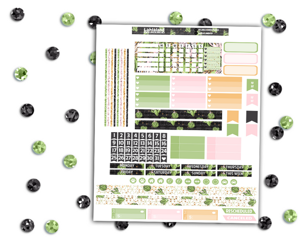 Mini Happy Planner - Succulents Weekly Kit