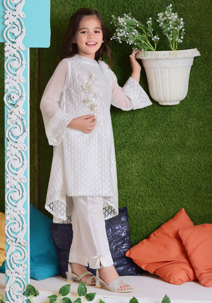 White Shimmer Net with Applique Embroidered