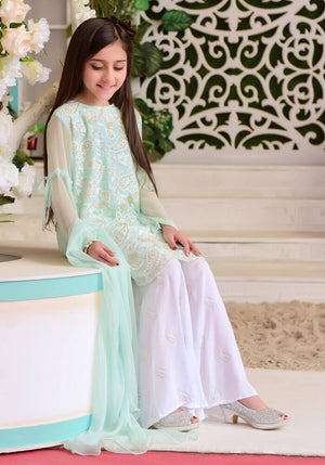 Mint Chiffon Fully Embroidered with Lining Inside - 3PC Suit