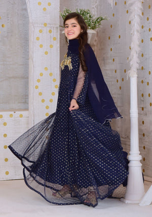 Navy Blue Gold Foil Net with Applique Embroidered
