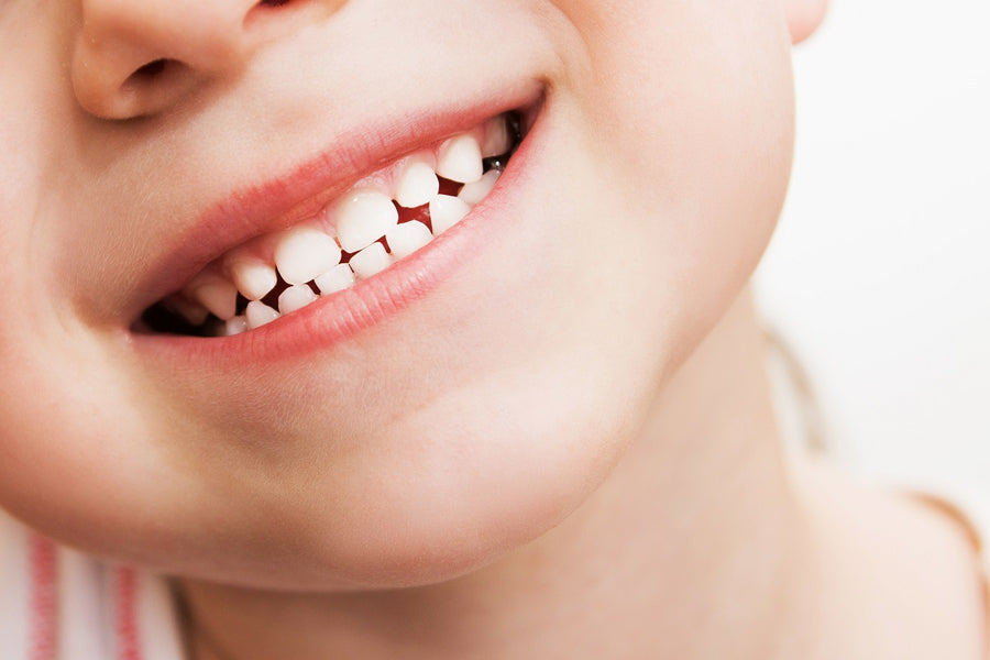 Baby Teeth: A Better Source for Stem Cells