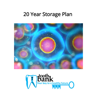 Tooth Bank Stem Cell Storage - 20 Year Long Term Discounted Plan