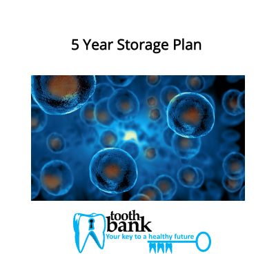 Tooth Bank Stem Cell Storage - 5 Year Long Term Discounted Plan