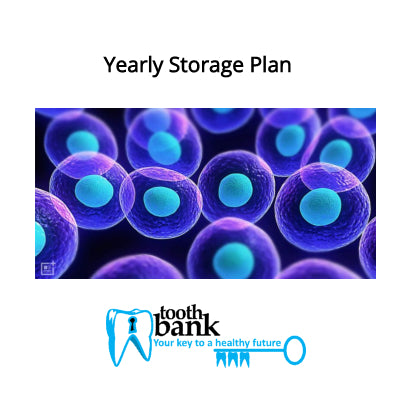 Tooth Bank Stem Cell Storage - Yearly Plan