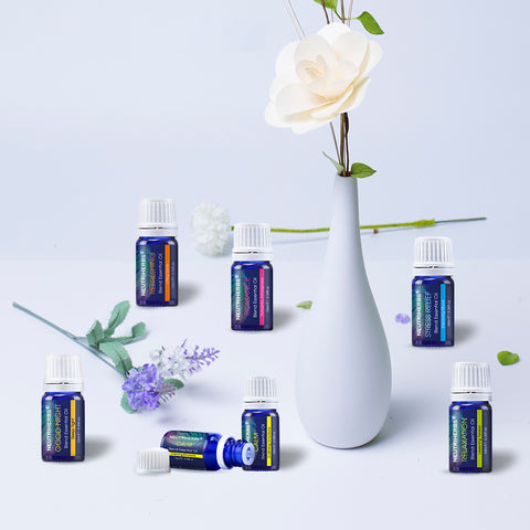Aromatherapy Essential Oils - 6 Pack
