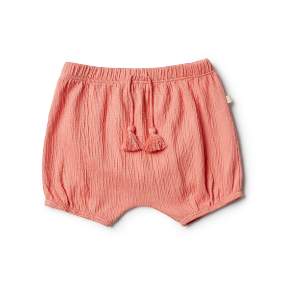 Watermelon short Wilson & Frenchy