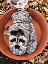 Z-Raccoon Mittens