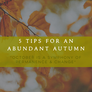 5 Tips for an Abundant Autumn