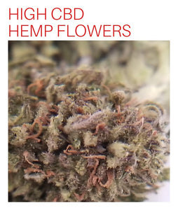 Check out our Review of P19 on the Hemp Bud Forum