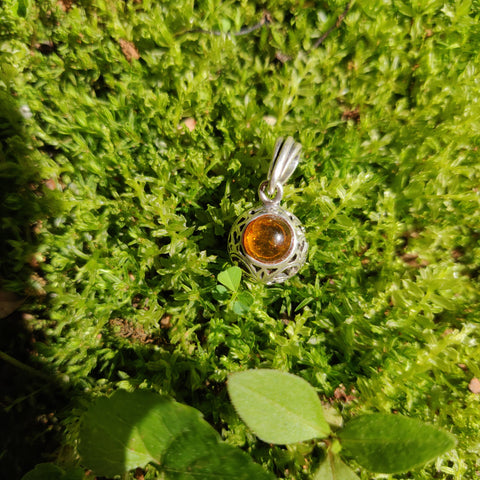 Baltic Amber Pendant in Sterling Silver (#6)
