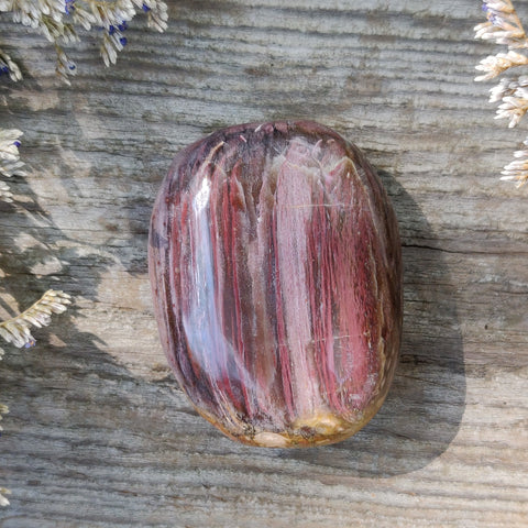 Reserved for Anon, Petrified Wood Palm Stone (#8)