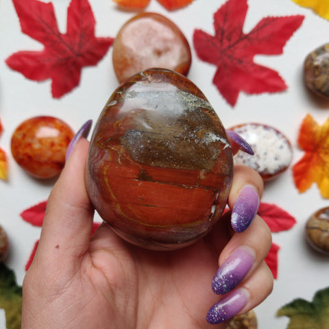 Petrified Wood Palm Stone (#A4)