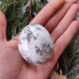 Dendritic Opal  Palm Stone (#23)