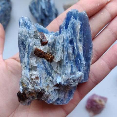 Blue Kyanite Specimen with Garnet Inclusions (#7)
