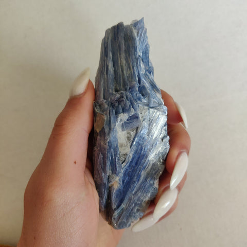 Blue Kyanite Specimen (#12)