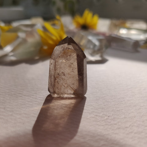 Rutilated Smoky Quartz Point (#2)
