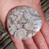 Flower Agate Palm Stone (#41)