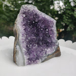 Amethyst Geode Free Form, Cut Base (#27)