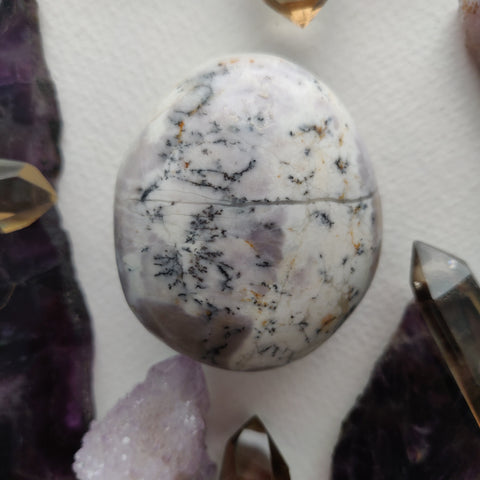 Dendritic Opal Palm Stone (#42)