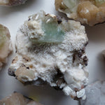Green Apophyllite on Mordenite (#16)