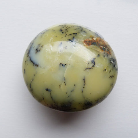 Dendritic Opal Palm Stone (#8)