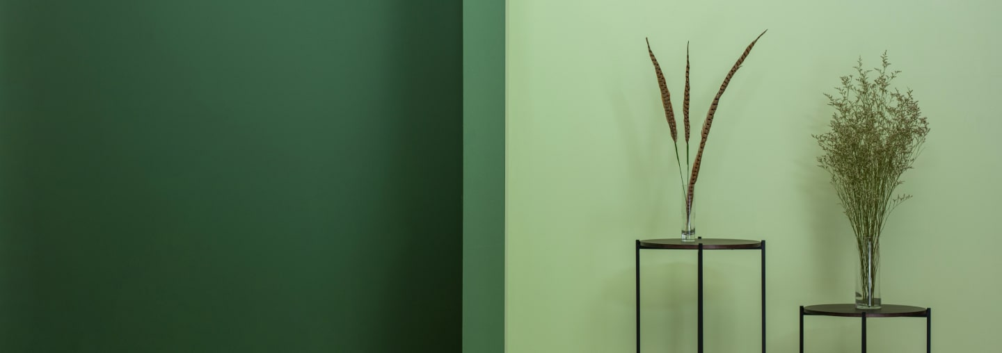 Image of a wall painted in two different colors of green and two tables with plants on them