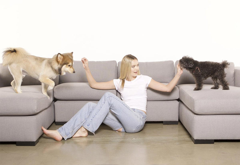 woman sitting in the floor next to a couch petting two dogs