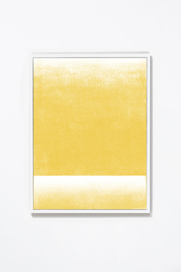 Lemon. Wall Art Wall Art White / 17'' x 21'' Whom. Home
