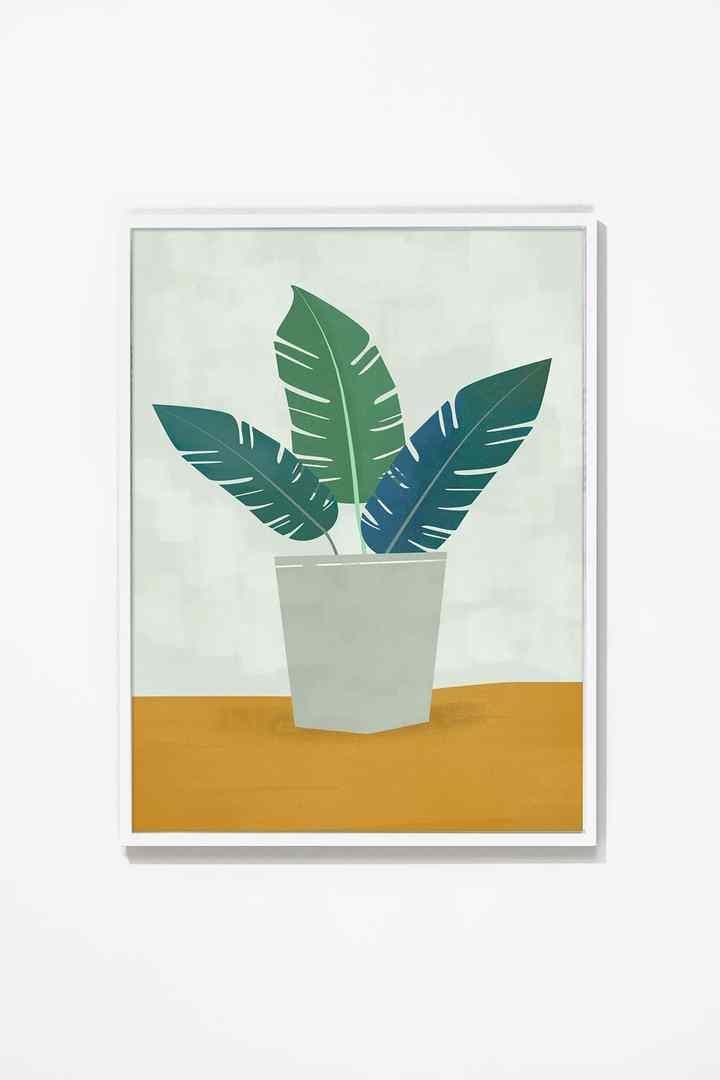Potted Wall Art Wall Art Canvas White Frame / 16x20 Whom. Home