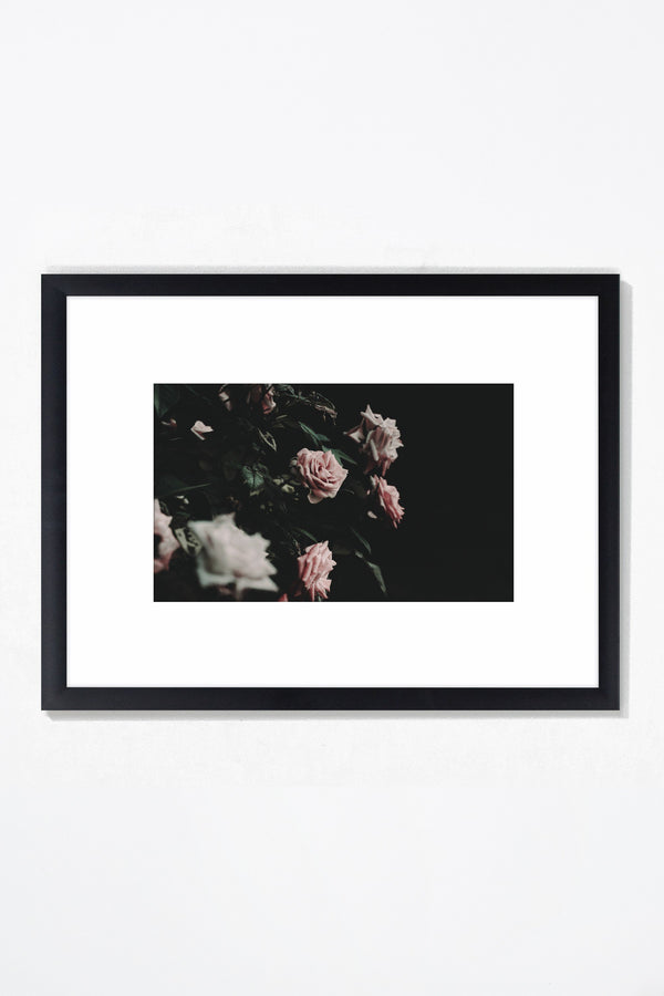 Thorned Wall Art Wall Art Underglass Black Frame / 21.25 '' x  17.25'' Whom. Home