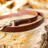 "1"" Dark Chocolate 4ft Leather Leash"