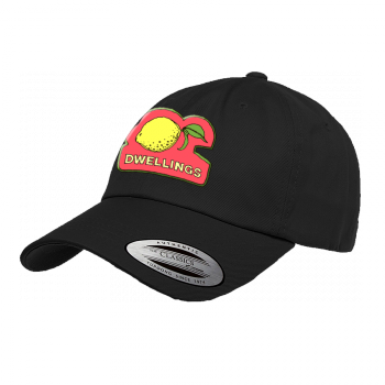 "Dwellings ""Lemonade"" Dad Hat"