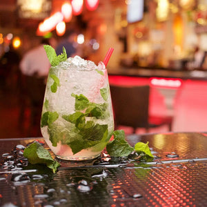 The Kentucky Derby Mint Julep