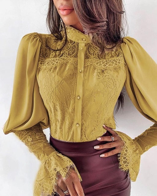 Long Sleeve Button Down Lapel Blouse