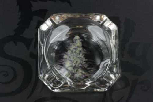 Bud Image - Glass Ashtray