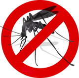 Kill Mosquitoes Fast Safe
