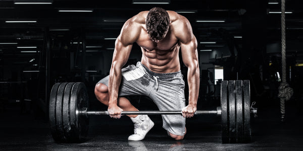 What Are SARMs & Muscle Gain Supplement News | SARMs Store