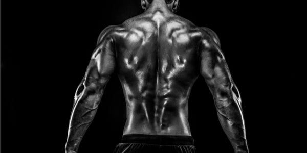 How Do SARMs Work & Where Did They Come From? | SARMs Store