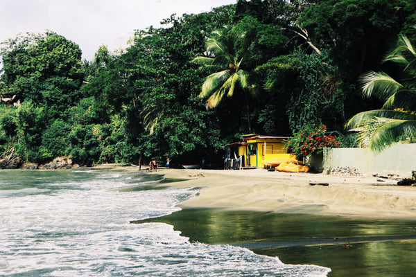 Our Guide to Tobago