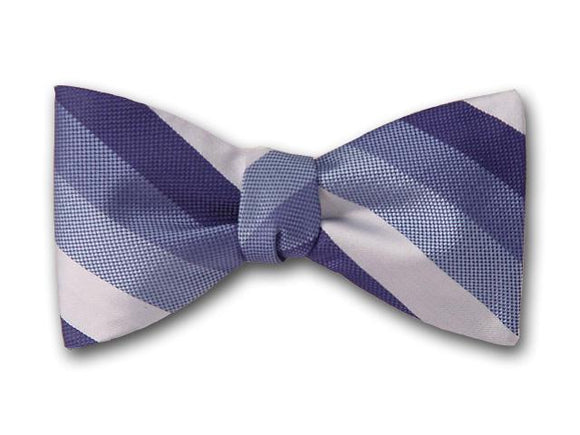 Blue striped men's bow tie.